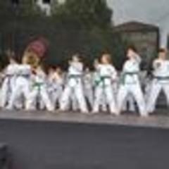 Disziplin und Ehrgeiz beim Taekwondo