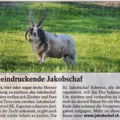 Dieser Artikel wurde in der Tierwelt im Oktober 2010 publiziert.