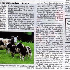 Artikel über unsere 1. Jakobschafschau vom 5.9.2009 ist in der Tierwelt erschienen.