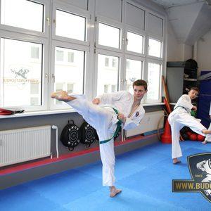 Kraftvolle Kampf-Techniken im Karate-Training
