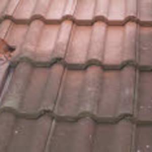 Dachbeschichtung