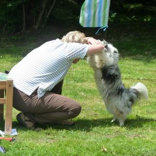 Hundeschule – Training individuell & persönlich