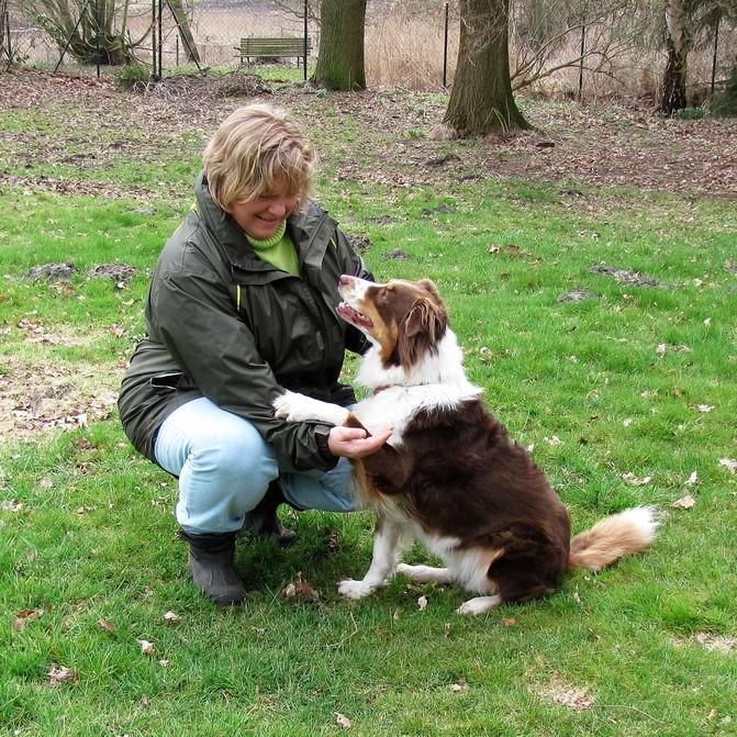 Hundeschule – Training fürsorglich & leise
