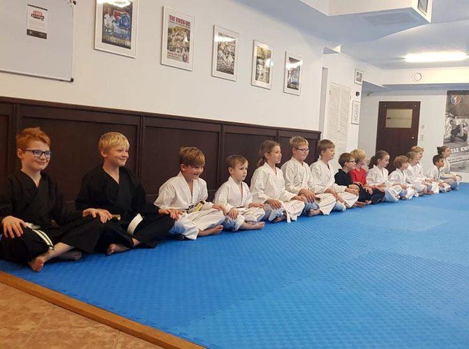 Kampfkunst und Kampfsport für Kinder 2018