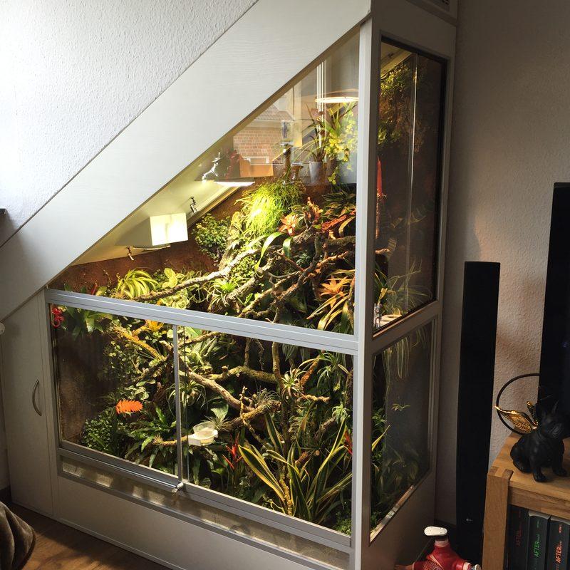 Terrarium eingebaut in Dach schräge Handmade-Terrarienbau