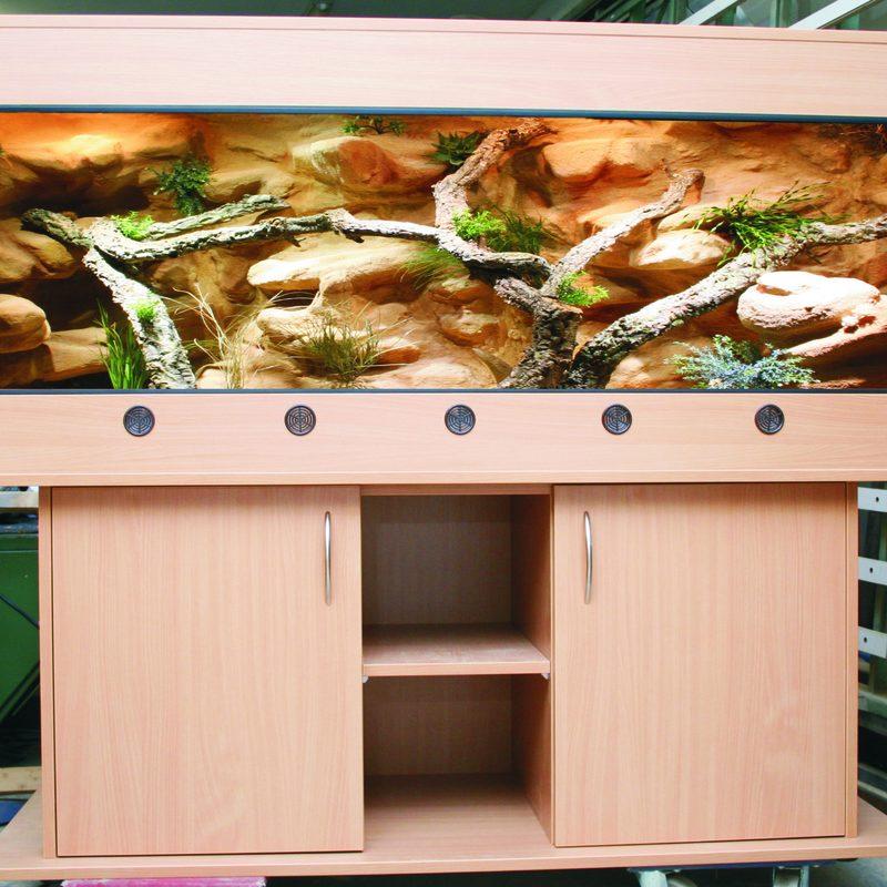 Wüsten terrarium Handmade-Terrarienbau