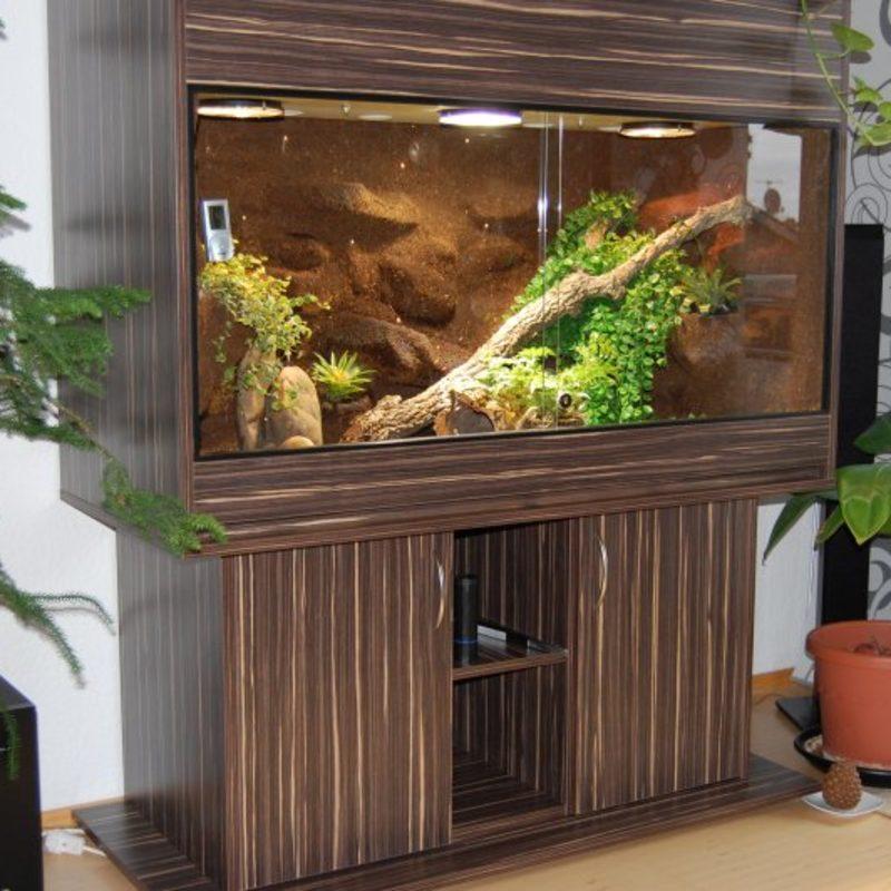 Schlangen Terrarium Handmade-Terrarienbau