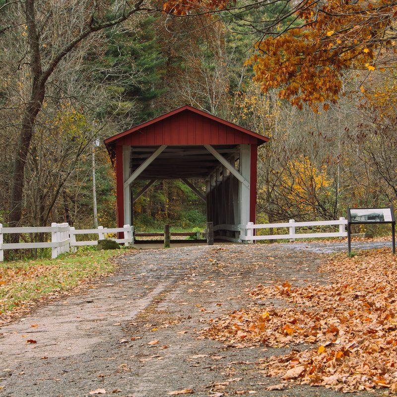 nature-photo-bridge