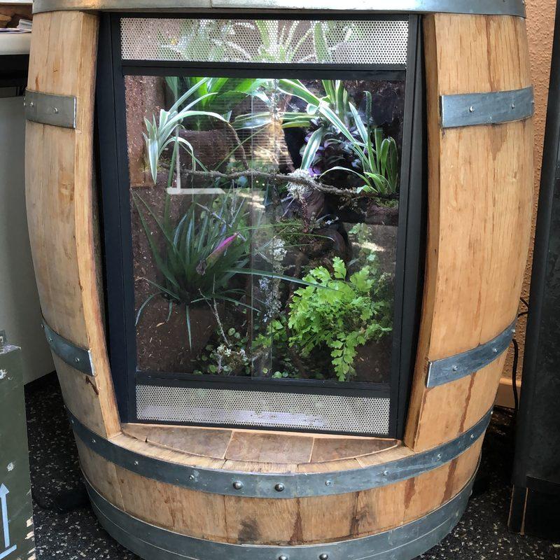 Handmade-Terrarienbau Terrarium im Weinfass