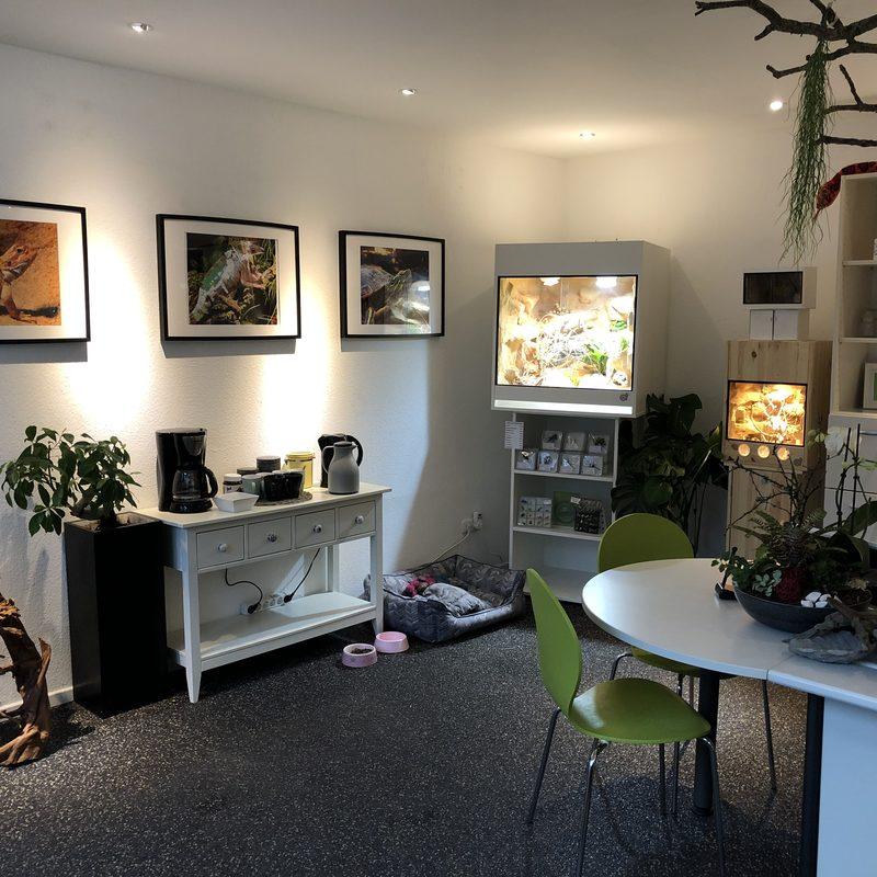 Handmade-Terrarienbau Büro und Ausstellung Terrarien