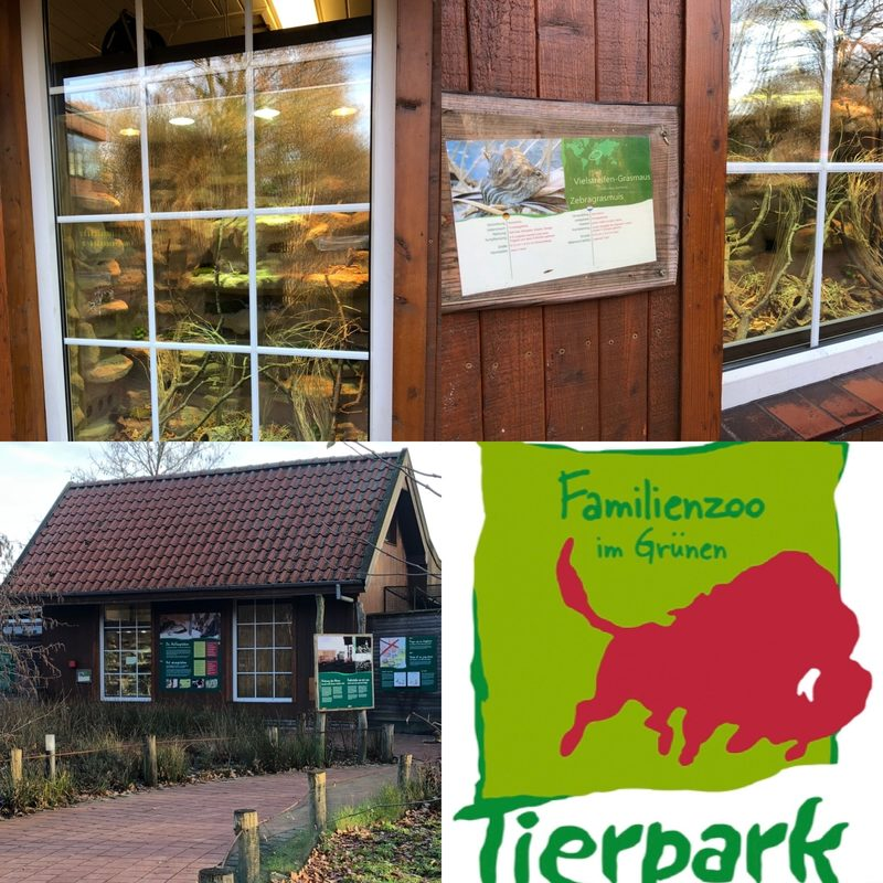 Handmade-Terrarienbau Tierpark Nordhorn